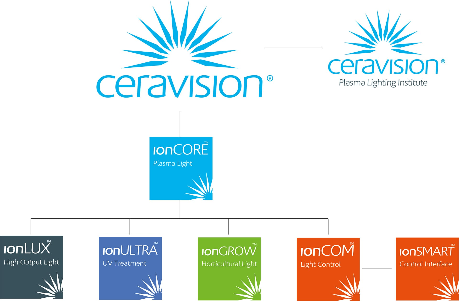 Ceravision Brand Review and Process Animation